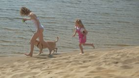 Mother and daughter run along the river bank with a dog. Sunny summer day. Family holiday. A mother with a daughter, a young woman in a white bathing suit and a stock video
