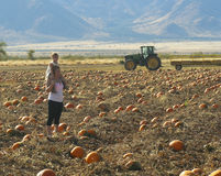 A Mother and Daughter Search a Patch for a Pumpkin Royalty Free Stock Photo
