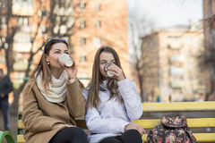 Mother and daughter sitting in autumn or spring the park on a bench outdoors, drink coffee Royalty Free Stock Photos