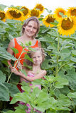 Mother and daughter standing at sunflowers field Stock Images
