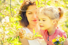 Mother and daughter in sunny park Stock Images