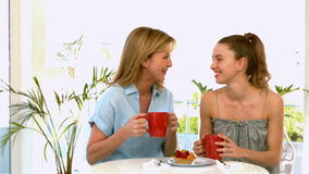Mother and daughter talking and drinking stock video