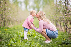 Mother and daughter together in a orchard, outdoors spring day t. Caucasian young mother and her little daughter kissing, outdoors in the orchard, spring season stock photos