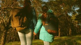 Mother and daughter travelers walking through the woods with a backpack. Hiker Girs in a pine forest. The tourist enjoys stock video footage