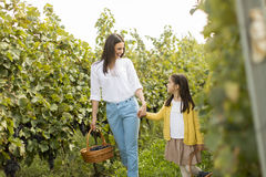 Mother and daughter in vineyard stock image