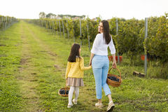 Mother and daughter in vineyard stock images