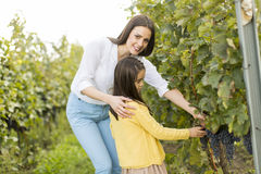 Mother and daughter in vineyard royalty free stock photo