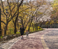 Mother and daughter walking under blooming cherry trees in park Royalty Free Stock Photos