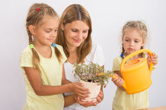 Mother and daughter watering houseplants Stock Image