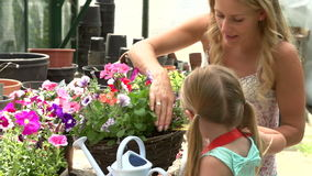 Mother And Daughter Watering Plants In Greenhouse stock video footage