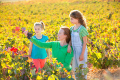 Mother and daughters on autumn vineyard smiling holding grape Stock Image