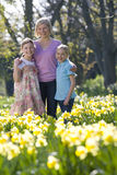 Mother and daughters standing in field of daffodils Royalty Free Stock Image