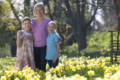 Mother and daughters standing in field of daffodils Stock Photos