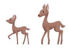 Mother deer and fawn Stock Photos