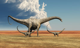 Mother Dinosaur. Mother Diplodocus dinosaur walks along with her brood of youngsters Royalty Free Stock Photos