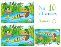 Free Mother Duck And Ducklings With Frog On A Pond. Find 10 Differences Royalty Free Stock Photo - 160236625