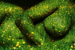 Mother Earth. Female body in grass and buttercups. Concept of Mother Earth Royalty Free Stock Photography