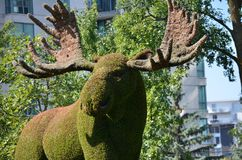 Mother Earth; moose, at MosaiCulture 2018. MosaiCulture 2018, Jacques Cartier Park, Gatineau, Quebec, Canada, 09/13/2018, Mother Earth; moose, one of the 45 stock photo