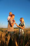 Mother and father with child on shoulders on wheat Stock Photos