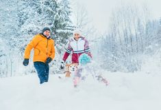 Mother and father family fooling in snow forest by throwing their little daugher to snowdrift royalty free stock image