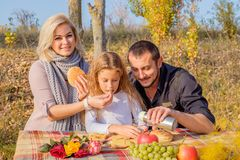 Mother and father feed daughter on picnic royalty free stock images