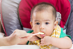 Mother feeding baby food Stock Photo