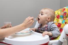Mother feeding baby with spoon full of porridge Royalty Free Stock Image