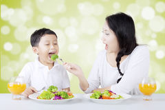 Mother feeding her son with fresh salad Royalty Free Stock Image