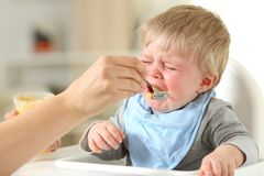 Mother feeding his son who is crying. Close up of a mother hand feeding his son who is crying sitting on a high chair Stock Photos