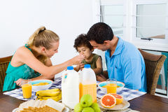 Mother feeding son. Young mother and father feeding toddler son at breakfast table Royalty Free Stock Photos
