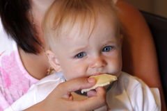 Mother feeds baby cheese Stock Photo