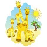 Mother-giraffe and baby-giraffes. Stock Photo