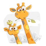 Cute Smiling Giraffes stock images