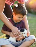 Mother give little terrier kid to son Royalty Free Stock Image