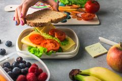 Mother giving healthy lunch for school in the morning stock photos
