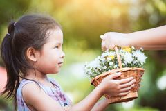 Mother hand giving basket of beautiful flowers to child. Mother hand giving basket of beautiful flowers to little child girl in the garden Royalty Free Stock Photo
