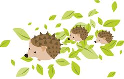 Mother hedgehog with two hadgehog babies stock illustration