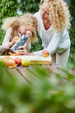 Mother help daugther rub apples Royalty Free Stock Photo