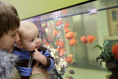Mother with her baby at aquarium Royalty Free Stock Photos