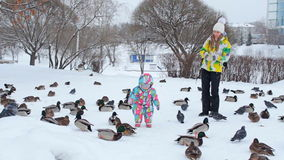 A mother and her baby are feeding doves and ducks on the snow. A mother and daughter dressed in bright warm jackets are feeding birds near the pond in a cold stock footage