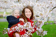 Mother and her child in blooming cherry garden Royalty Free Stock Images