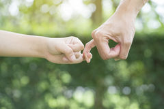 A mother and her child hooking their fingers to make a promise. Close up Stock Photos