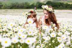 Mother with her child playing in camomile field Stock Image