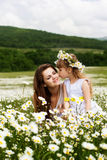 Mother with her child playing in camomile field Royalty Free Stock Images