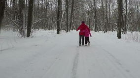 Mother with her child walk in park at winter day. Slowmotion stock footage