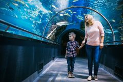 Mother and her child watching sea life. In oceanarium Royalty Free Stock Photography