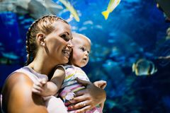 Mother and her child watching sea life in oceanarium. Fascinated mother and her child watching sea life in oceanarium Stock Images