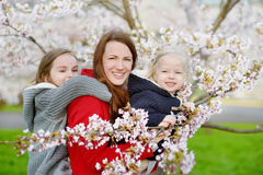 Mother and her children in blooming cherry garden Stock Photo