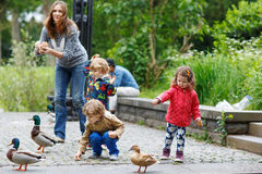 Mother and her children feeding ducks at summer. Two little boys and adorable girl royalty free stock images