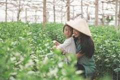 Mother and her daughter farming in the farm together. Portrait of mother and her daughter farming in the farm together Stock Image